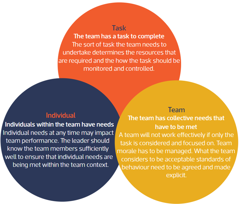 leadership and team performance pdf